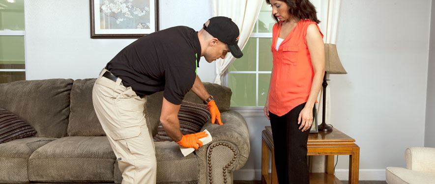 La Puente, CA carpet upholstery cleaning
